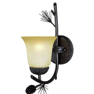 Great Price Stricklin 1-Light Bath Sconce By Millwood Pines