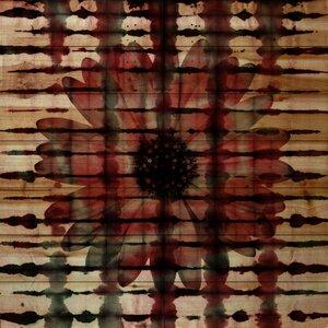'Wine' by Parvez Taj Painting Print on Natural Pine Wood by Latitude Run