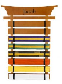 Personalized Martial Arts Belt Holder Wall Plaque by KidKraft
