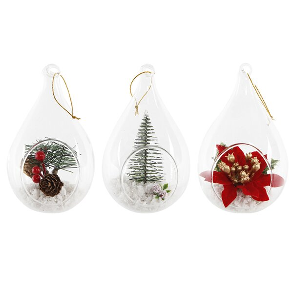 Christmas Hanging Succulent Plant in Glass Teardrop Gift Set (Set of 3) by The Holiday Aisle