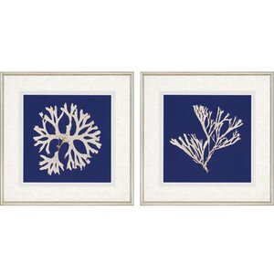 Seaweed I Giclee by Anonymous 2 Piece Framed Graphic Art Set (Set of 2) by Paragon