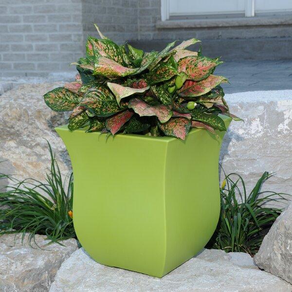 Valencia Plastic Pot Planter by Mayne Inc.