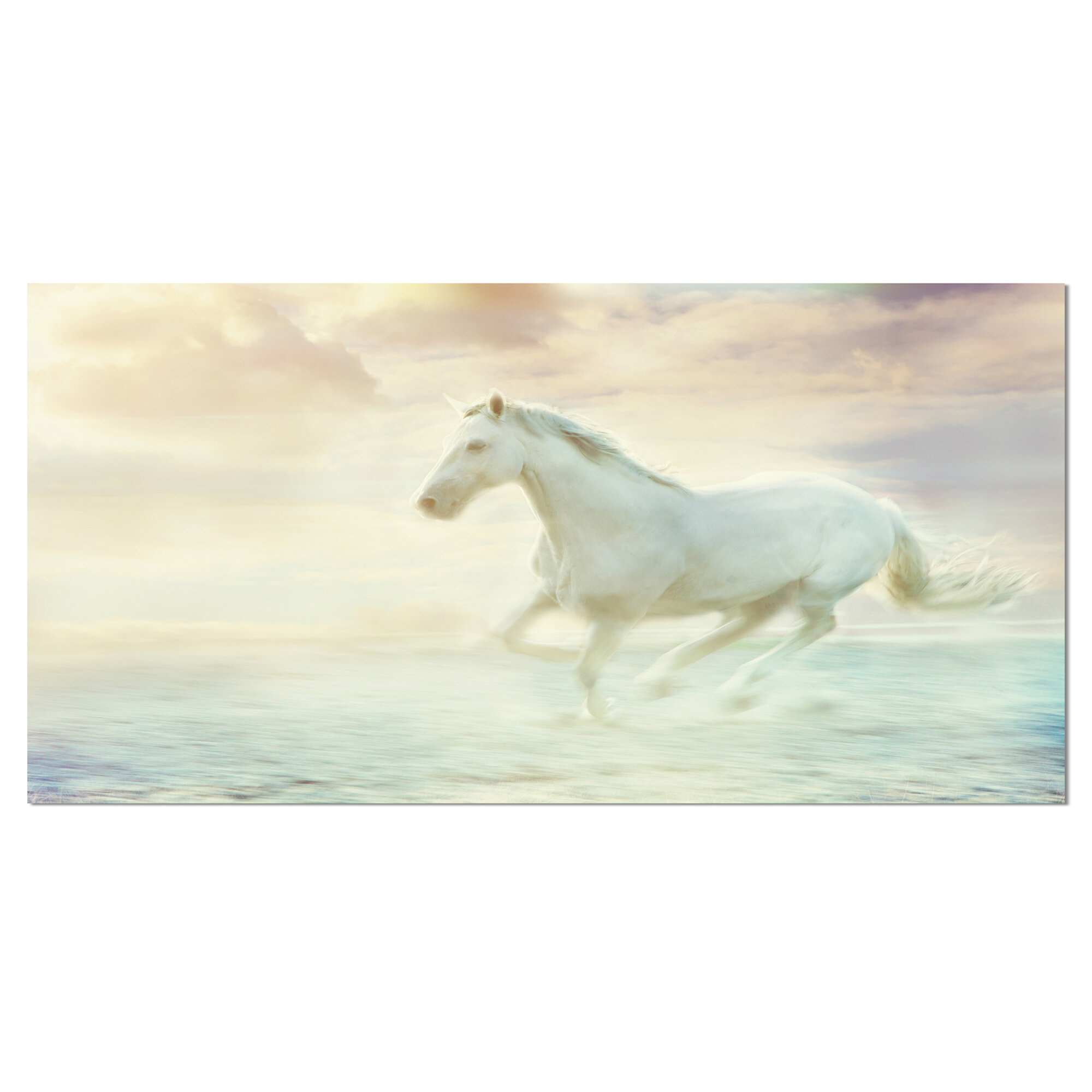 Ebern Designs Fantasy White Horse Graphic Art On Wrapped Canvas Reviews