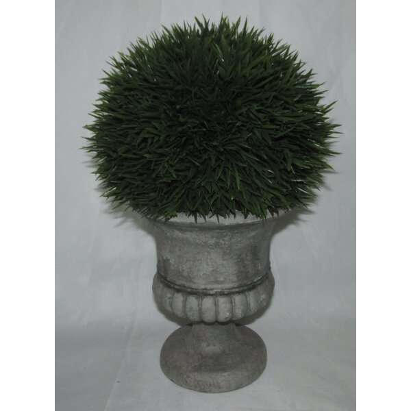 Cedar Topiary in Urn by Jeco Inc.