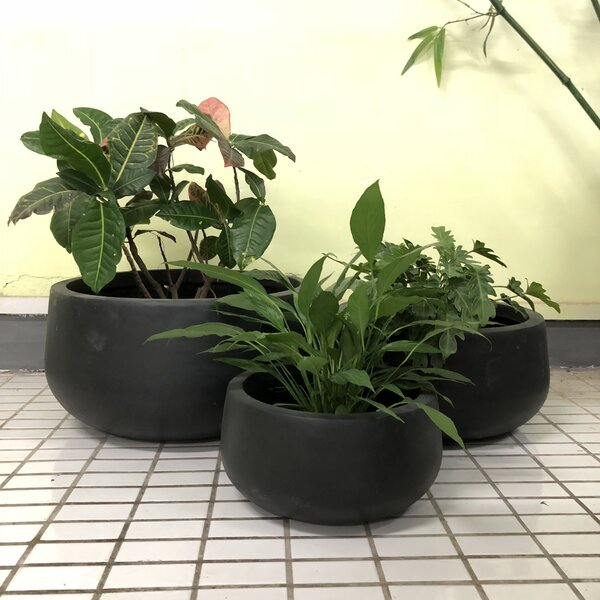 Gee Low Bowl 3-Piece Pot Planter Set by Williston Forge