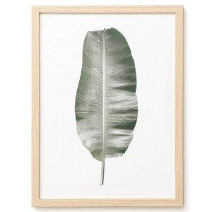 'Banana Leaf' Framed Graphic Art Print on Glass by Elizabeth Hales Design