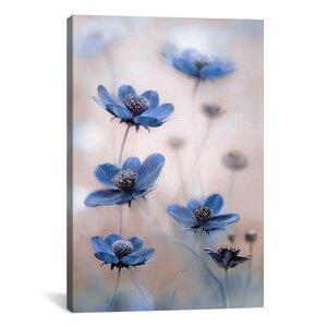 Cosmos Photographic Print on Wrapped Canvas by Latitude Run