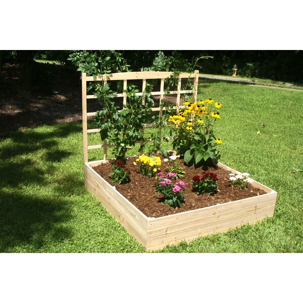 Konkol 4 ft x 4 ft Wood Raised Garden with Trellis by August Grove