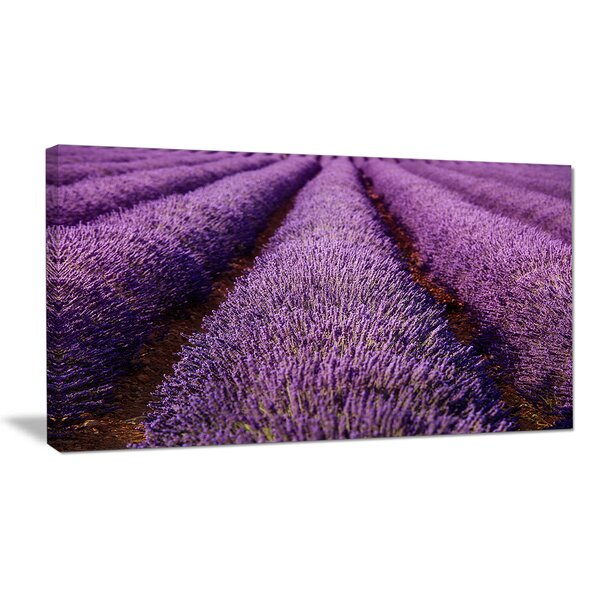 Endless Rows of Lavender Field Photographic Print on Wrapped Canvas by Design Art