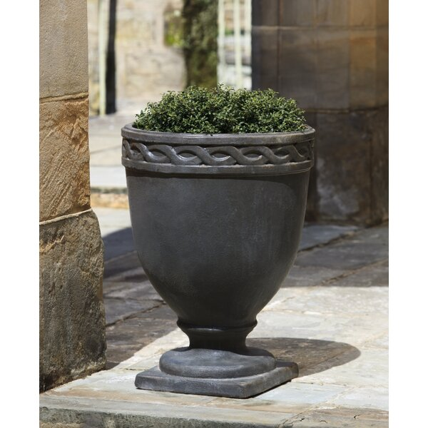 Maida Terra Cotta Pot Planter by Darby Home Co