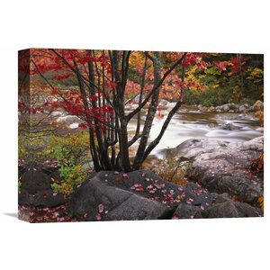 Nature Photographs The Swift River, White Mountains National Forest, New Hampshire Photographic Print on Wrapped Canvas by Global Gallery