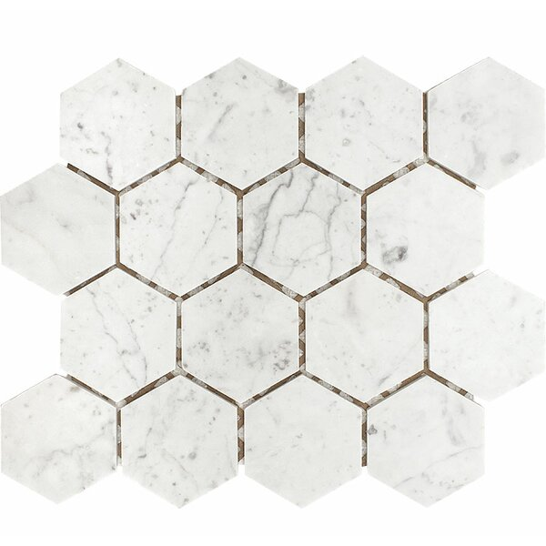 Carrara Hexagon 3 x 3 Stone Mosaic Tile in White Honed by Parvatile