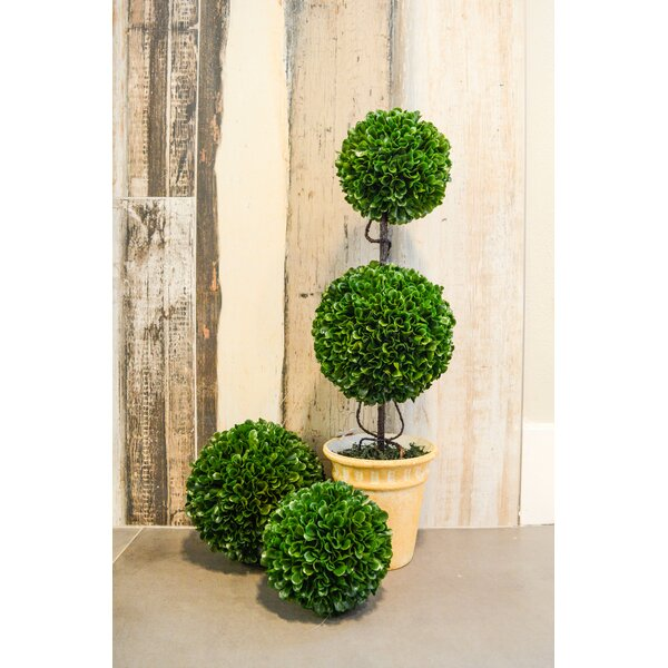 Faux Preserved Floor Boxwood Floor Topiary in Pot by Ophelia & Co.