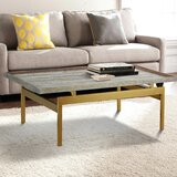 https://secure.img1-ag.wfcdn.com/im/79568116/resize-h160-w160%5Ecompr-r85/9900/99004535/roesler-coffee-table.jpg
