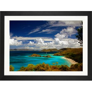 'Trunk Bay' Photographic Print by East Urban Home