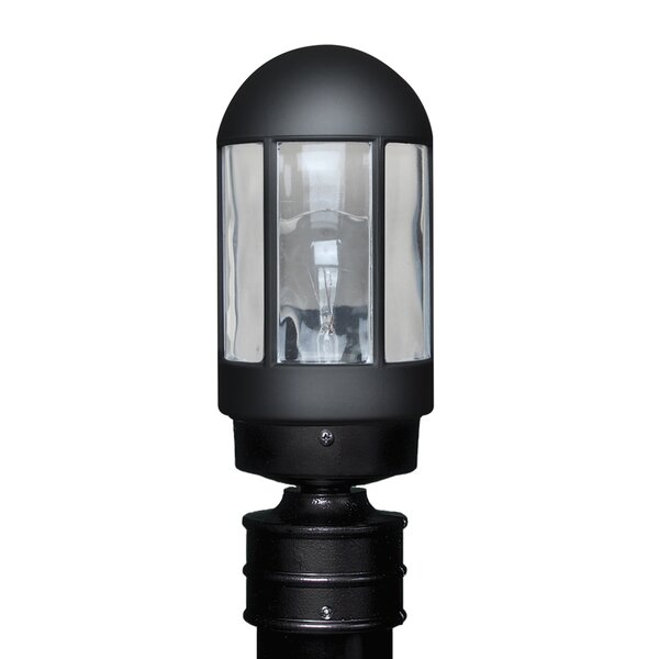 Donnie 1-Light Blown Glass Lantern Head by Latitude Run