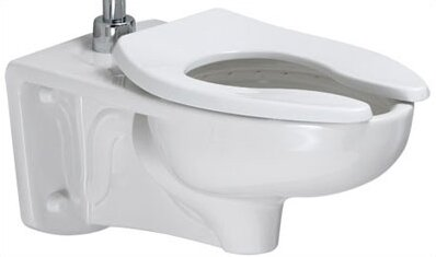 Afwall Dual Flush Elongated One-Piece Toilet by American Standard