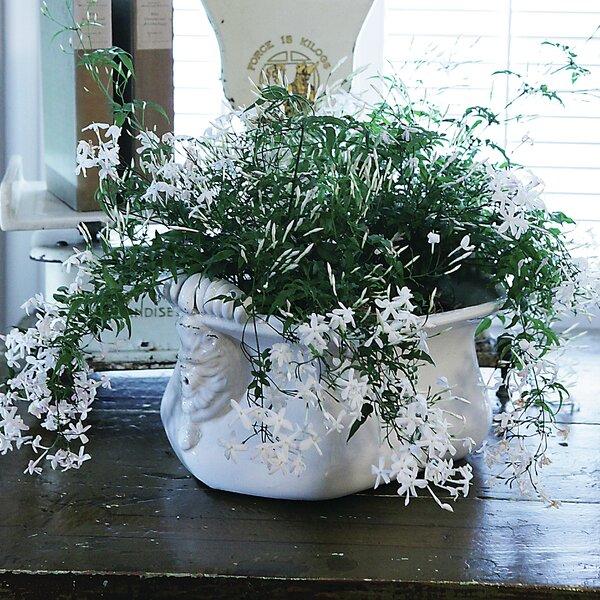 Bistro Ceramic Pot Planter by Creative Co-Op