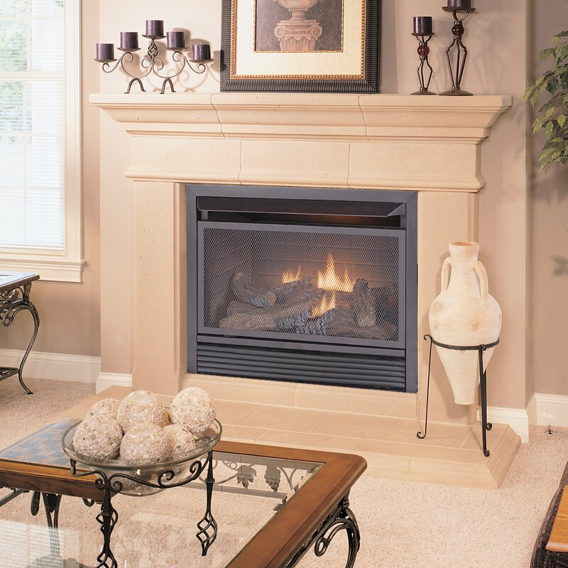 Duluth Forge Dual Fuel Ventless Natural Gas/Propane Fireplace ...