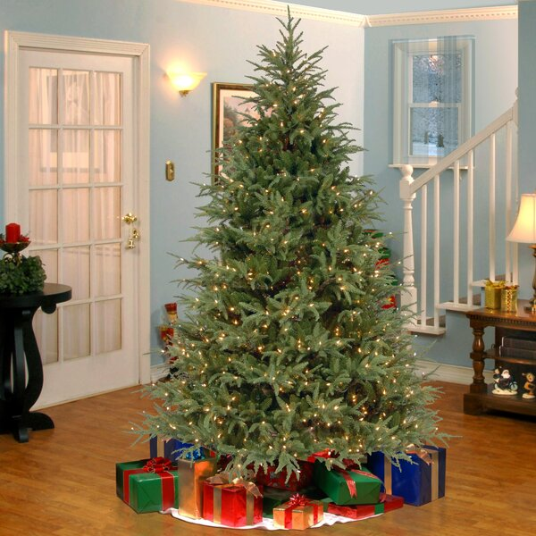 14 Ft Christmas Tree Part - 21: 7.5u0027 Frasier Green Grande Artificial Christmas Tree With 1000 Clear Lights  With Stand