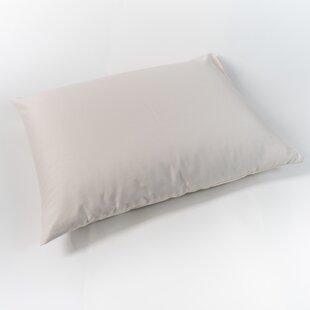 Xavier Organic Cotton Pillow ByAlwyn Home