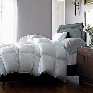 Goose Fall/Spring Down Alternative Comforter