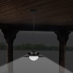 Great choice 1-Light LED Outdoor Pendant By Sunforce