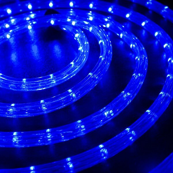 LED Rope Light by The Holiday Aisle