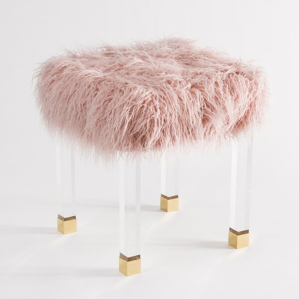 Nilsa Faux Fur Acrylic Accent Stool by Everly Quinn