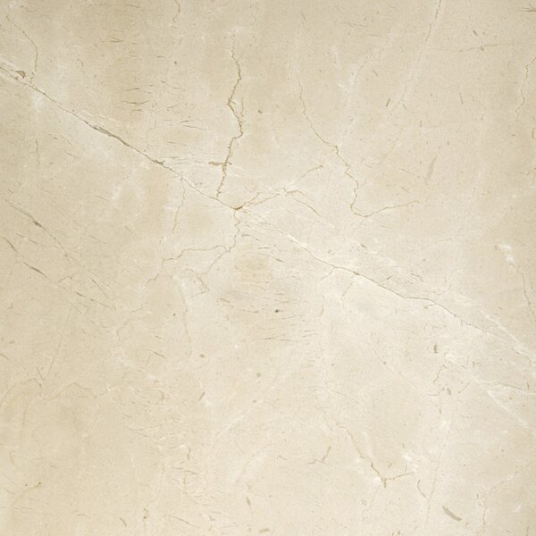 Marble 18 x 18 Field Tile in Crema Marfil Classico by Emser Tile