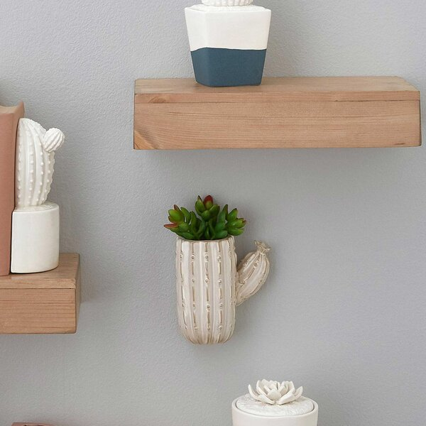 Quinto Cactus Hanging Ceramic Wall Planter by Hallmark Home & Gifts
