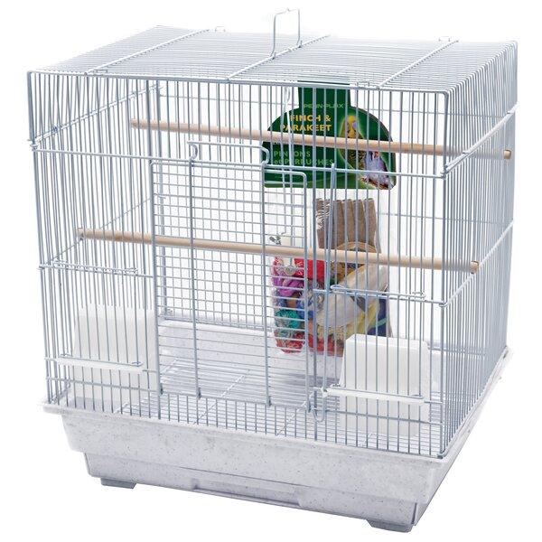 Bird Starter Kit (Set of 2) by Penn Plax