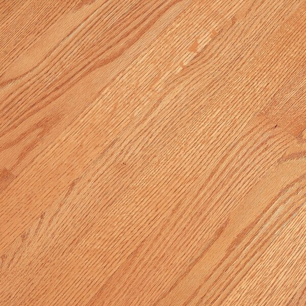 Fulton 3-1/4 Solid Red Oak Hardwood Flooring in Butterscotch by Bruce Flooring