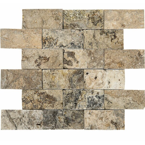 Split Face 2 x 4 Stone Mosaic Tile in Antico by Parvatile