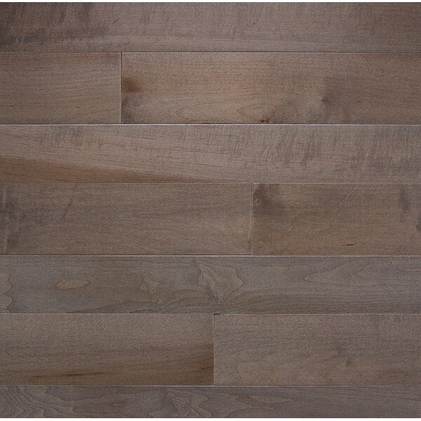 Specialty 4 Solid Maple Hardwood Flooring in Greystone by Somerset Floors