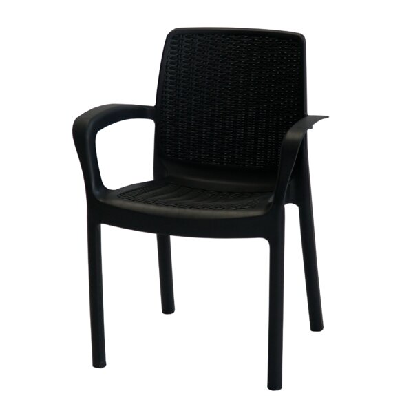 Omorodion Stacking Patio Dining Chair (Set of 2) by Orren Ellis