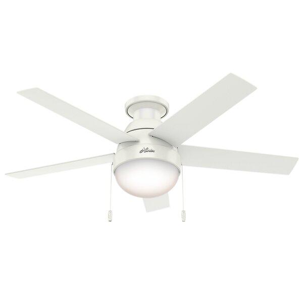 46 Anslee 5-Blade Ceiling Fan by Hunter Fan
