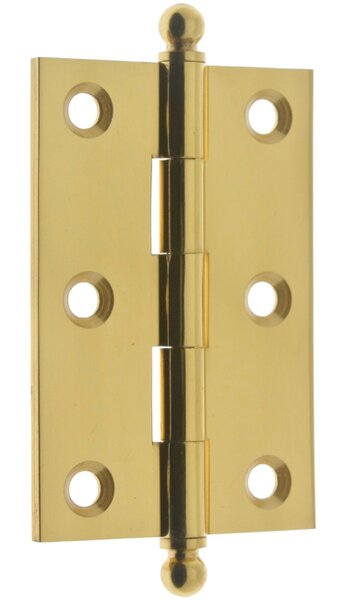 Solid Brass Mortise Hinge (Set of 2) by idh by St. Simons