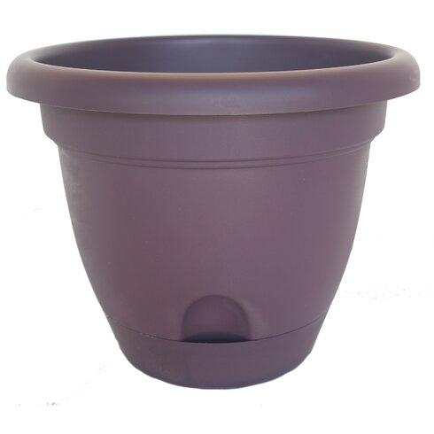 Bloem Lucca Self Watering Plastic Pot Planter Reviews
