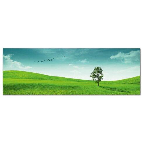 Acrylglasbild Wiese, Baum, Wolken, Vögel