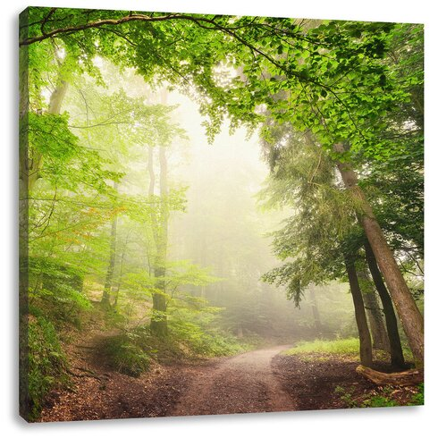Rays of Sun on Forest Path Photographic Print on Canvas