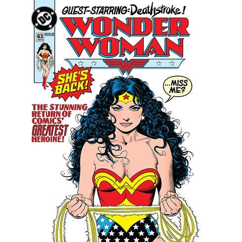 DC Comics Wonder Woman - She'S Back Vintage Advertisement Canvas Wall Art