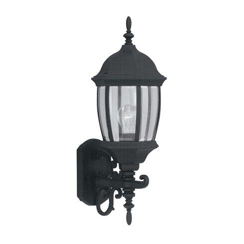 Tiverton 1-Light Outdoor Wall lantern