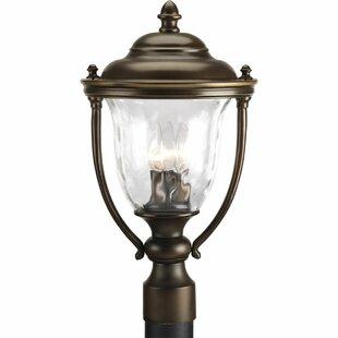 Price comparison Triplehorn 3-Light Lantern Head By Alcott Hill