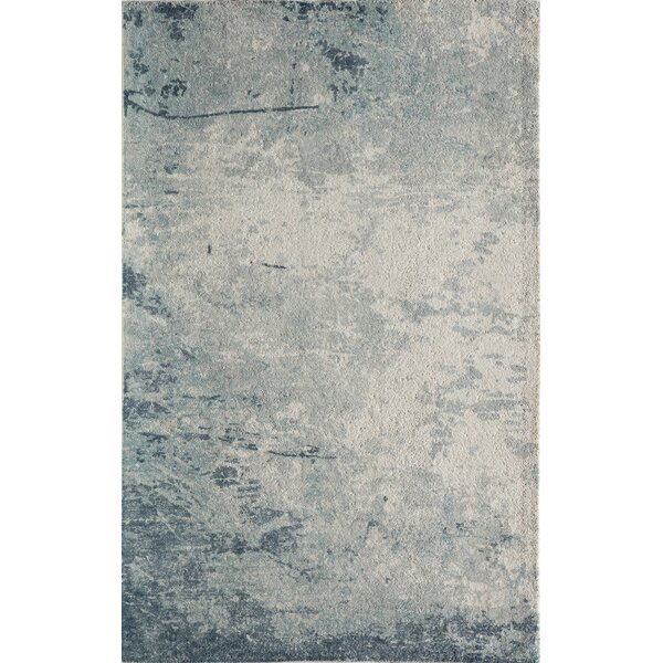 Stanford Hand-Tufted Blue/Ivory Area Rug by Trent Austin Design