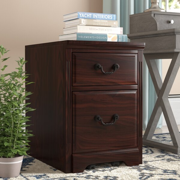 Appleby Transitional 2-Drawer Vertical Filing Cabinet by Darby Home Co