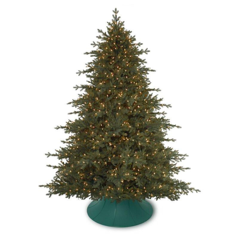Algreen Christmas Tree Angel Live Tree Stand | Wayfair