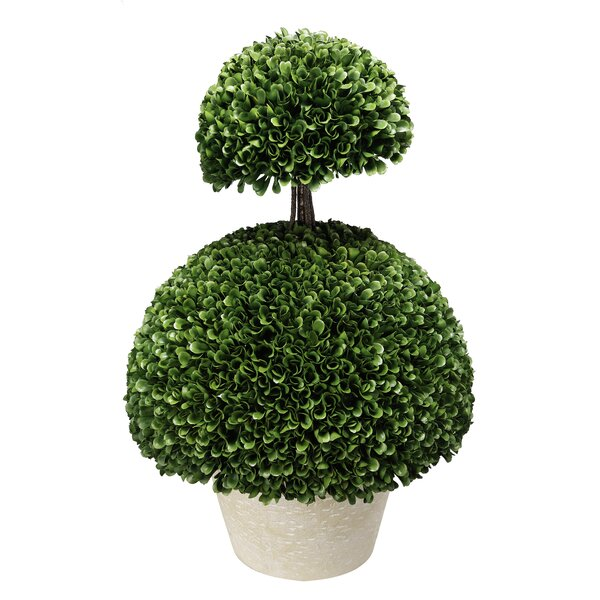 Floor Boxwood Topiary in Pot by Darby Home Co