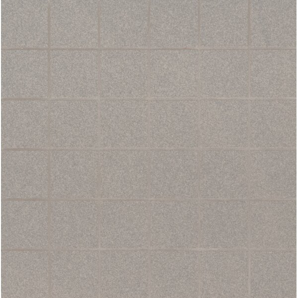 Optima 2 x 2 Porcelain Mosaic Tile in Gray by MSI