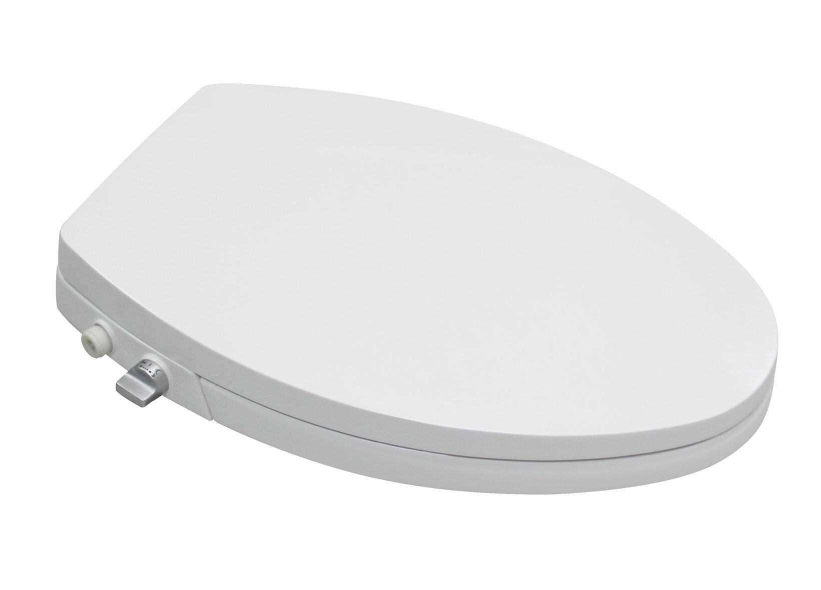 Terrific Dual Nozzles Elongated Toilet Seat Bidet Alphanode Cool Chair Designs And Ideas Alphanodeonline